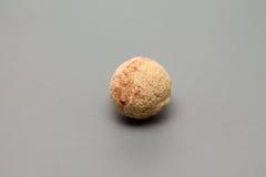 Πέτρα κύστεων στοκ φωτογραφία με δικαίωμα ελεύθερης χρήσης