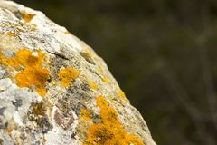 Πέτρα που καλύπτεται φυσική με τη σύσταση λειχήνων Στοκ φωτογραφία με δικαίωμα ελεύθερης χρήσης