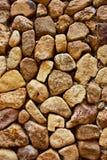 πέτρα προτύπων Στοκ Φωτογραφίες