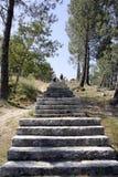 πέτρα σκαλών Στοκ φωτογραφία με δικαίωμα ελεύθερης χρήσης