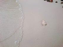 Πέτρα στην παραλία Στοκ εικόνα με δικαίωμα ελεύθερης χρήσης
