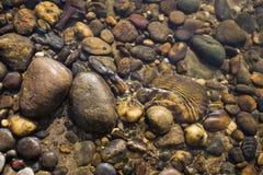 Πέτρα χρώματος φύσης κινηματογραφήσεων σε πρώτο πλάνο στο σαφές υπόβαθρο ποταμών νερού, έννοια φύσης Στοκ Εικόνες