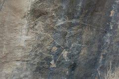 Πέτρα Gobustan με την αγελάδα Στοκ φωτογραφία με δικαίωμα ελεύθερης χρήσης