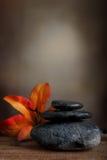 πέτρα SPA Στοκ εικόνες με δικαίωμα ελεύθερης χρήσης