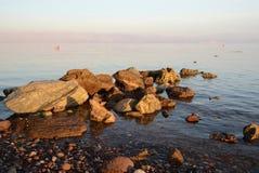 Πέτρες ζωνών στην παλίρροια βραδιού Στοκ Εικόνα