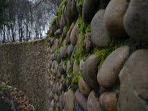 πέτρες και βρύο στοκ εικόνες
