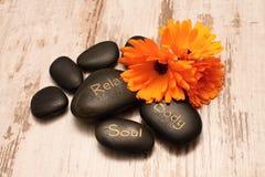 Πέτρες και marigold λάβας Στοκ Εικόνα