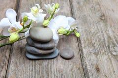 Πέτρες και orchid Zen Στοκ Εικόνα