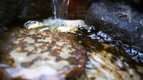 Πέτρες καταρρακτών και βράχων φιλμ μικρού μήκους