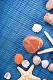 πέτρες κοχυλιών Στοκ Εικόνες