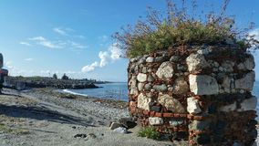 Πέτρες με τις εγκαταστάσεις σε μια θερινή παραλία Στοκ Εικόνες