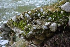 Πέτρες νερού στοκ εικόνα