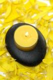 πέτρες πετάλων λουλουδ στοκ φωτογραφίες με δικαίωμα ελεύθερης χρήσης