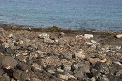 Πέτρες πορειών Στοκ φωτογραφίες με δικαίωμα ελεύθερης χρήσης