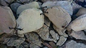 Πέτρες που συνδέονται με το καλώδιο στοκ εικόνες