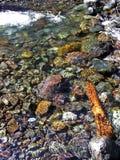 Πέτρες σε έναν καταρράκτη Στοκ Φωτογραφία
