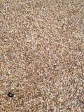 Πέτρες στην αδριατική θάλασσα στοκ φωτογραφία με δικαίωμα ελεύθερης χρήσης