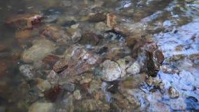 Πέτρες στον ποταμό απόθεμα βίντεο