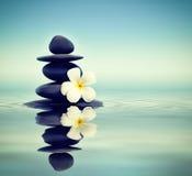 Πέτρες της Zen με το frangipani Στοκ Εικόνες
