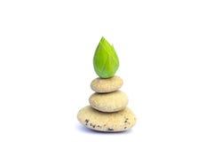 Πέτρες της Zen Στοκ εικόνες με δικαίωμα ελεύθερης χρήσης