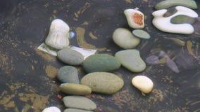 Πέτρες χαλικιών μέσω της επιφάνειας νερού φιλμ μικρού μήκους