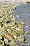 Πέτρες & χαλίκια που διαμορφώνουν μια ακτή Στοκ Φωτογραφίες