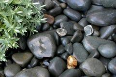 πέτρες Στοκ Φωτογραφίες
