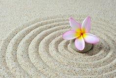 πέτρες frangipani λουλουδιών zen στοκ φωτογραφία με δικαίωμα ελεύθερης χρήσης