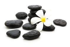 πέτρες SPA και όμορφο plumeria στο λευκό Στοκ φωτογραφία με δικαίωμα ελεύθερης χρήσης