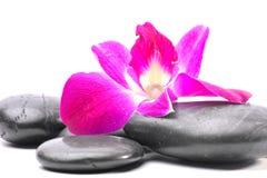 Πέτρες SPA και Orchid λουλούδια στοκ εικόνα