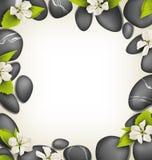 Πέτρες SPA με τα άσπρα λουλούδια κερασιών όπως το πλαίσιο στο μπεζ Στοκ εικόνες με δικαίωμα ελεύθερης χρήσης