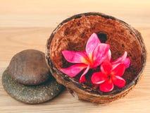 Πέτρες SPA με το λουλούδι Frangipani Στοκ Εικόνες