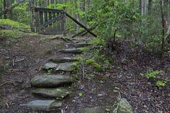 Πέτρινα βήματα στην παλαιά ξύλινη πύλη Στοκ Εικόνα