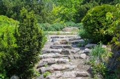 Πέτρινα σκαλοπάτια μέσω των κωνοφόρων φυτειών στον κήπο στοκ φωτογραφίες με δικαίωμα ελεύθερης χρήσης