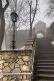 Πέτρινα σκαλοπάτια που οδηγούν στη βασιλική του ST Anne στο υποστήριγμα ST Στοκ Εικόνες