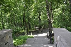 Πέτρινη αλέα σκαλοπατιών στο πάρκο του υποστηρίγματος βασιλικό από το Μόντρεαλ Στοκ φωτογραφίες με δικαίωμα ελεύθερης χρήσης