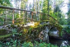 Πέτρινη γέφυρα στο πολύβλαστο δάσος στοκ εικόνα