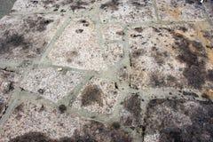 Πέτρινη εικόνα υποβάθρου τούβλων Στοκ Φωτογραφία