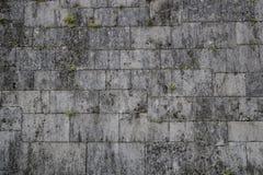 Πέτρινη επιφάνεια τοίχων με το ύφος της Ιαπωνίας τσιμέντου Στοκ Εικόνα
