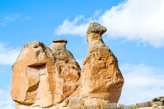 Πέτρινη καμήλα Στοκ φωτογραφία με δικαίωμα ελεύθερης χρήσης