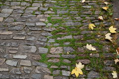 Πέτρινη οδός Στοκ εικόνες με δικαίωμα ελεύθερης χρήσης