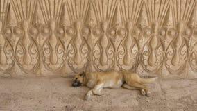 Πέτρινη χάραξη, Ιράκ στοκ εικόνα με δικαίωμα ελεύθερης χρήσης