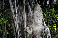 Πέτρινος αριθμός Ταϊλάνδη Στοκ Εικόνες