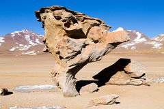 Πέτρινος βράχος δέντρων, Βολιβία Στοκ Εικόνα