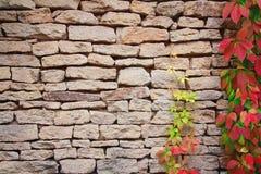 Πέτρινος τοίχος στοκ φωτογραφίες