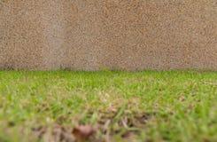 Πέτρινος τρόπος περιπάτων στην πράσινη χλόη Στοκ Εικόνες