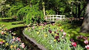 Πέτρινος τρόπος περιπάτων στον κήπο απόθεμα βίντεο