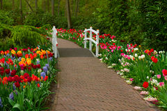 Πέτρινος τρόπος περιπάτων στον κήπο Στοκ φωτογραφία με δικαίωμα ελεύθερης χρήσης