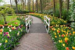 Πέτρινος τρόπος περιπάτων στον κήπο Στοκ Εικόνες
