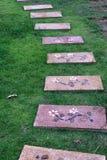 Πέτρινος τρόπος σκαλοπατιών στον πράσινο κήπο στοκ εικόνες